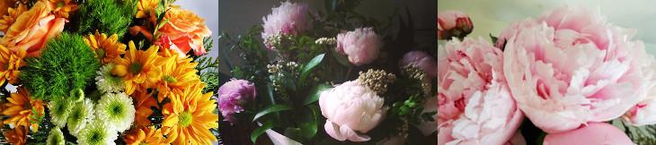 flores-3-1
